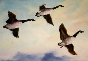 oil-Geese Formation: Stage II Oils Course