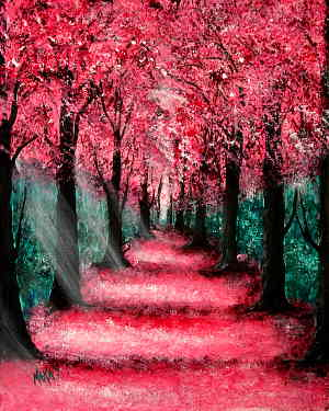Cherry Blossom Path: Stage I